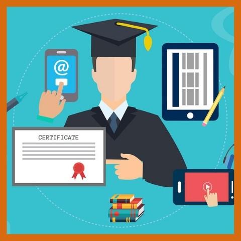 индивидуальное обучение онлайн
