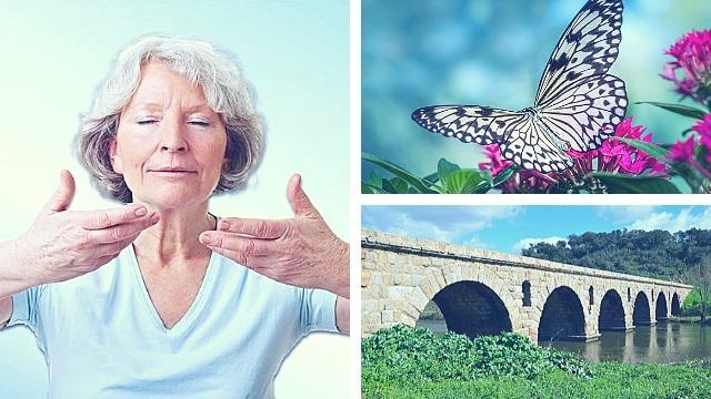 Речевое дыхание, как опоры моста и как крылья бабочки